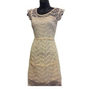 Pinky Lace Dress